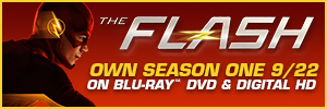 The Flash 300 x100 HTML Banner